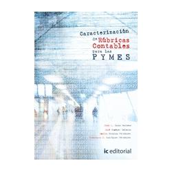 Caracterizacion de rubricas contables para las PYMES