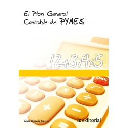 El Plan General Contable de Pymes