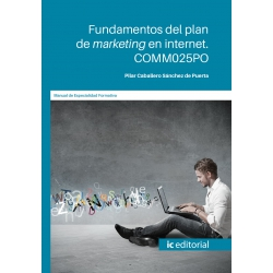 COMM025PO. Fundamentos del plan de marketing en internet